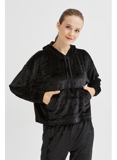 Penti Kadın Siyah Velvet  Sweatshirt PHN1TGY620SK Siyah